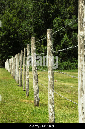 Barbed wire fence made of weathered wooden posts. - Stock Photo