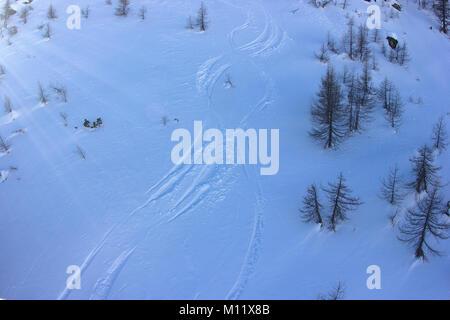 off piste tracks in fresh snow in skiing resort 'Chiesa in Valmalenco', Sondrio, Italy - Stock Photo