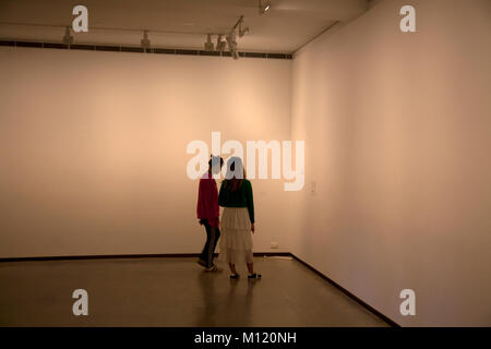 plug socket extension cable in gallery being viewed as exhibit museum of contemporary art  circular quay sydney - Stock Photo