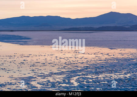 Salt crystals and briny water at twilight on the Bonneville Salt Flats, which is BLM land west of the Great Salt - Stock Photo