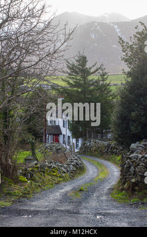 A tree lined winding gravel lane in the Mountains of Mourne in Northern Ireland leading to a beautiful country house - Stock Photo