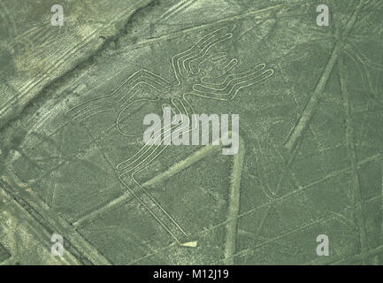 The Nazca Lines in Peru, here you can see the Spider - Stock Photo