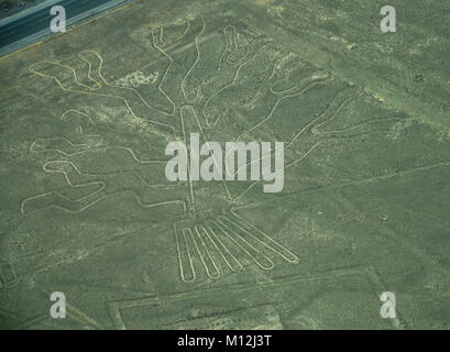 The Nazca Lines in Peru, here you can see the Tree - Stock Photo