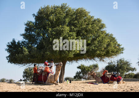 Loading a camel for trekking in the Thar Desert, Rajasthan, India - Stock Photo