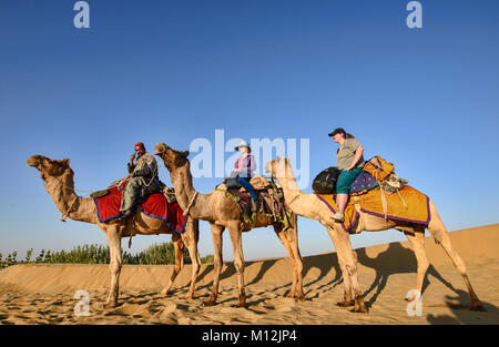 Camel trekking in the Thar Desert, Rajasthan, India - Stock Photo