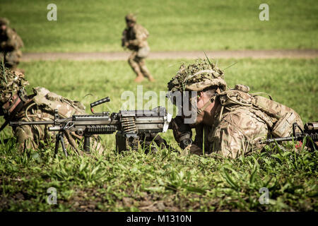 U.S. Army Soldier, assigned to Delta Company, 1st Battalion, 27th Infantry Regiment 'Wolfhounds', 2nd Infantry Combat - Stock Photo