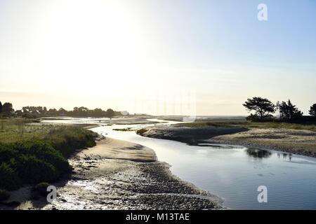 France, Manche, Cotentin, near Barfleur - Stock Photo