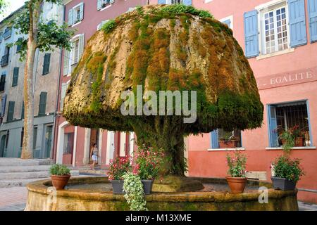 France, Var, Provence Verte, Barjols, fountain covered with tuff and moss in front of town Hall - Stock Photo