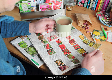 Male gardener prepares to order seeds from gardening  catalogues in winter (January), in preparation for the new - Stock Photo