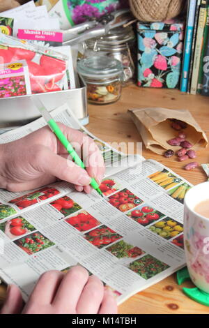 Organising seed packets and ordering seeds from a catalogue for the new planting season, in an English garden room - Stock Photo