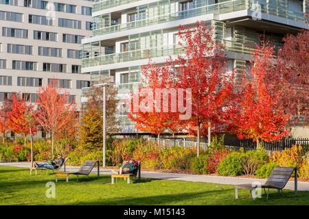 France, Paris, Quartier des Batignoles, Martin Luther King Park in the autumn, redeveloped on former SNCF property - Stock Photo