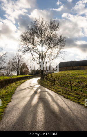 Backlit winding Road with farms in countryside of South Limburg, Netherlands. Stock Photo