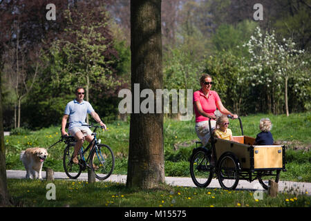 The Netherlands, 's-Graveland. Mother and 2 children on adapted bicycle. Father and Golden Retriever dog. - Stock Photo