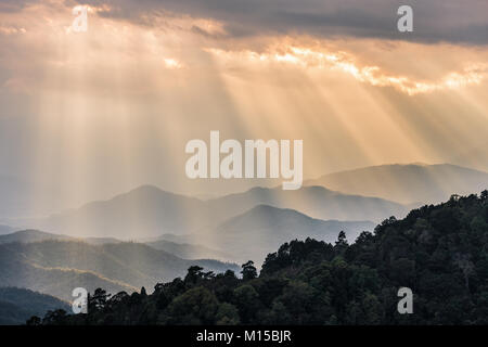 Scenic sunbeams shining through cloudy sky before sunset to mountain range and silhoutted slope of tropical tree - Stock Photo