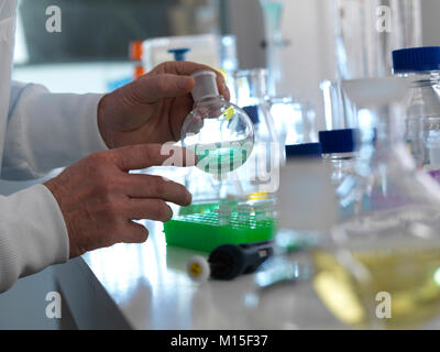 MODEL RELEASED. Biotechnology experiment. Scientist preparing a chemical formula in a laboratory flask during a - Stock Photo