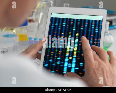 MODEL RELEASED. Scientist viewing results of a genetic test on a digital tablet.