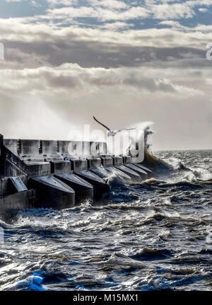 Dramatic stormy sea breaking against brighton marina black harbour wall, spray and waves high in the air, rough - Stock Photo