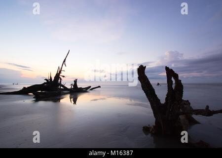 beautiful seascape and beach with an expressive sky and driftwood and dead trees on the beach at sunrise on Boneyard - Stock Photo