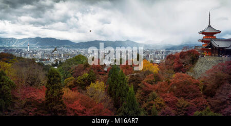 Panoramic view of cityscape with Sanjunoto pagoda, eagles flying in stormy skies and colorful autumn trees in the - Stock Photo