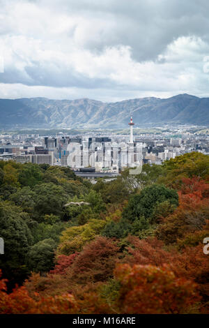 Kyoto tower and the cityscape with mountains in the background and colorful autumn trees in foreground with an eagle - Stock Photo