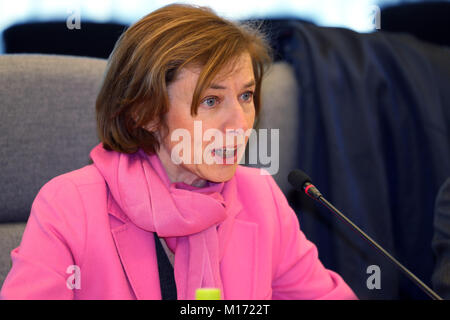 Tokyo, Japan. 27th Jan, 2018. French Armed Forces Minister Florence Parly talks with her Japanese counterpart Itsunori - Stock Photo