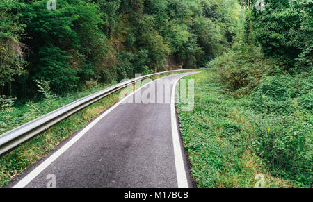 Asphalt cycling path in the woods in nothern Italy - Stock Photo
