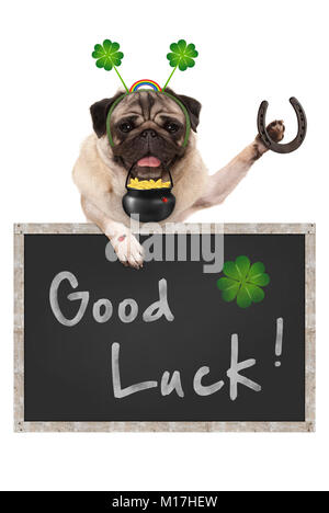 Talisman pug puppy dog, with blackboard sign, shamrock clover, golden coins, lady bug and horse shoe for good luck - Stock Photo