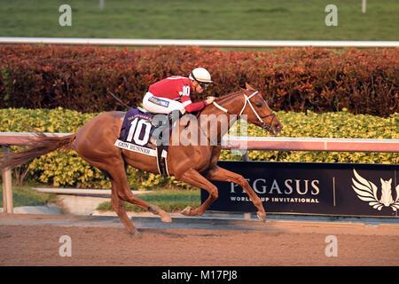 Hallandale, FL, USA. 27th Jan, 2018. Betting Favorite Gun Runner #10, ridden by Florent Geroux, wins the $16 Million - Stock Photo