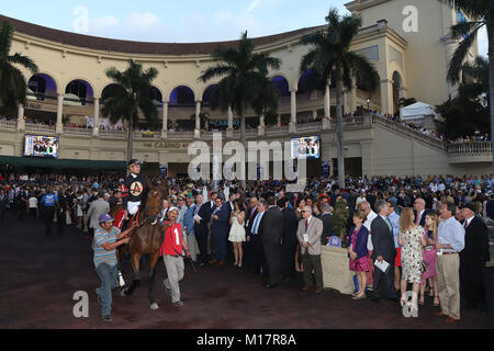 HALLANDALE, FL - JANUARY 27: Betting Favorite Gun Runner #10, ridden by Florent Geroux,and owned by Winchell Thoroughbreds - Stock Photo