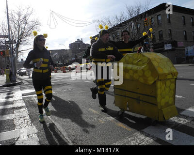 New York, USA. 26th Jan, 2018. The team 'Pollinators' is dressed as bees during the 'Idiotarod', a leisure race - Stock Photo