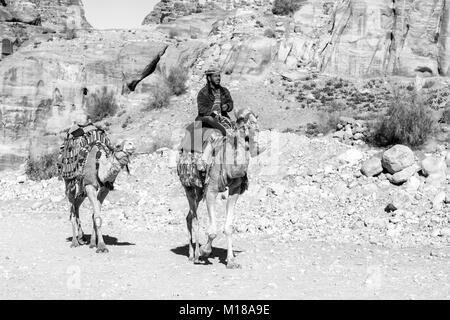 Petra, Jordan – December 25th, 2015: Bedouin man riding a camel in the ancient Nabatean city of Petra, Jordan - Stock Photo