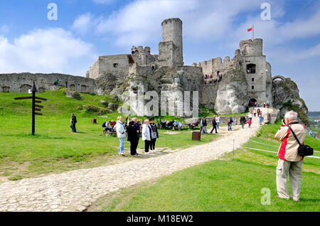 Ruins of medieval royal castle Ogrodzieniec in Podzamcze village, part of Trail of the Eagle's Nests, Polish Jurassic - Stock Photo