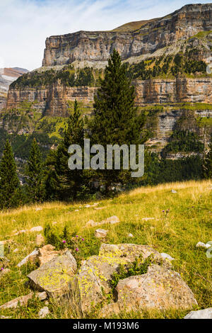 North walls of Ordesa Valley & lichen covered rocks in meadow on Faja de Pelay hiking trail. Ordesa National Park; - Stock Photo