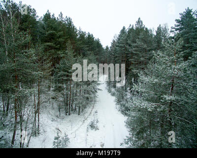 Winter forest and road. View from above. The photo was taken with a drone. Pine and spruce forest with a road in - Stock Photo
