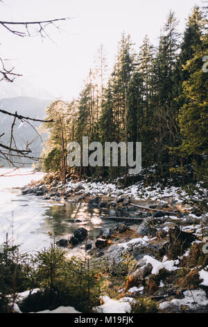 Forest scene on a sunny day during winter at Lake Eibsee, Grainau, Upper Bavaria, Germany. - Stock Photo
