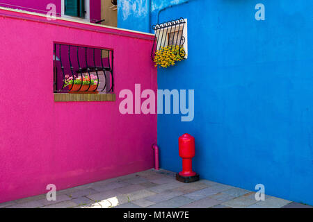 Purplish red and vivid blue colored walls of small houses on island of Burano in Venice, Italy. - Stock Photo
