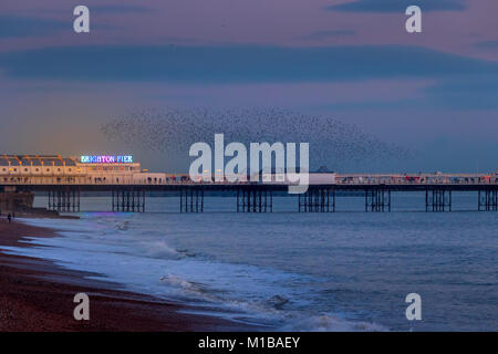 BRIGHTON, EAST SUSSEX/UK - JANUARY 26 : Starlings over the Pier in Brighton East Sussex on January 26, 2018. Unidentified - Stock Photo