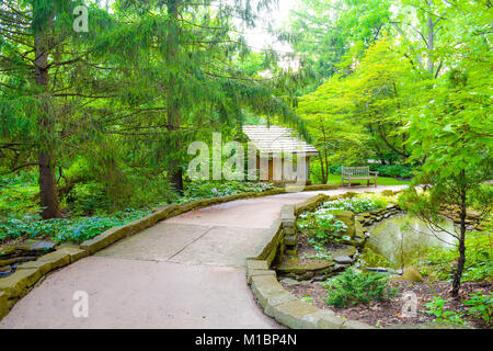 A walking trail through nature passing by a rustic shed. Lush green trees, plants and evergreens surround. A beautiful - Stock Photo