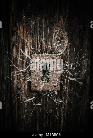 spider webs surrounding a keyhole  in an old wooden door - Stock Photo
