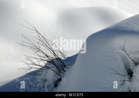 Winter Landscape at San Pellegrino pass in the Italian Dolomites, Val di Fiemme, Trento, Italy. - Stock Photo