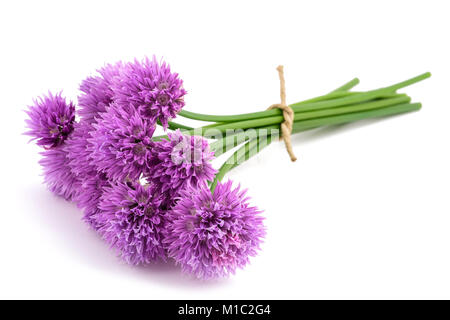 Chive flowers bunch tied isolated on white background - Stock Photo