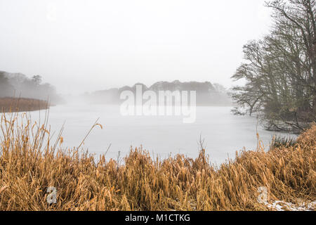 A cold winter morning at Kelly Lake on the Haddo Estate, Aberdeenshire, Scotland - Stock Photo