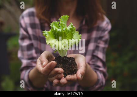 Woman holding plant in hand - Stock Photo