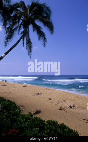 Pipeline, North shore Oahu is one of the best surfing beaches in the world Stock Photo