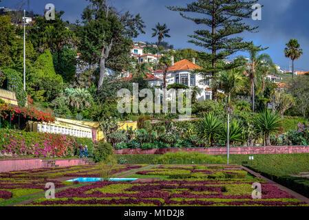 Flowerbeds, Botanical Garden, Funchal, Madeira, Portugal, Blumenbeete, Botanischer Garten - Stock Photo