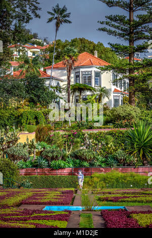 Flowerbeds, Manor House, Botanical Garden, Funchal, Madeira, Portugal, Blumenbeete, Herrenhaus, Botanischer Garten - Stock Photo