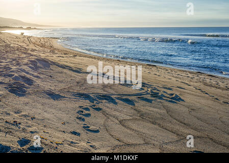 San Onofre State Beach in the morning. San Clemente, California, USA. - Stock Photo