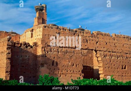 Stork nests,El Badi Palace,Marrkesh,Morocco - Stock Photo