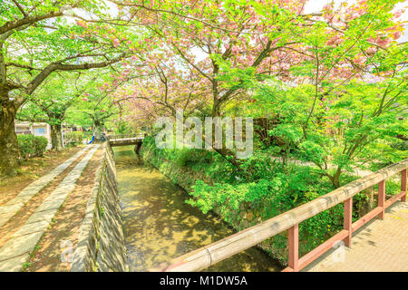 Philosopher's Walk Kyoto - Stock Photo