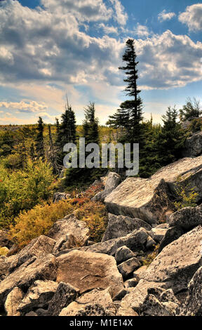 Bear Rocks Dolly Sods West Virginia - Stock Photo